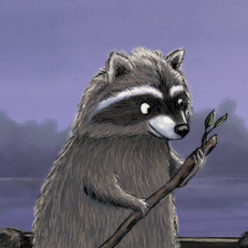 Raccoons in boat