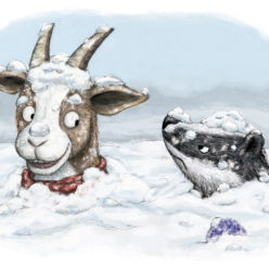Goat and Badger in snow pile