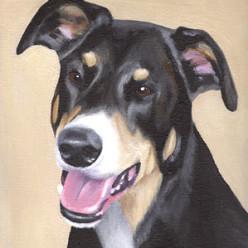 MaxAcrylic on Canvas