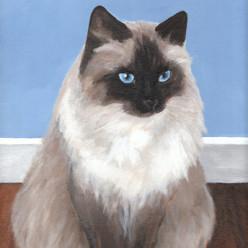 SammyAcrylic on Canvas